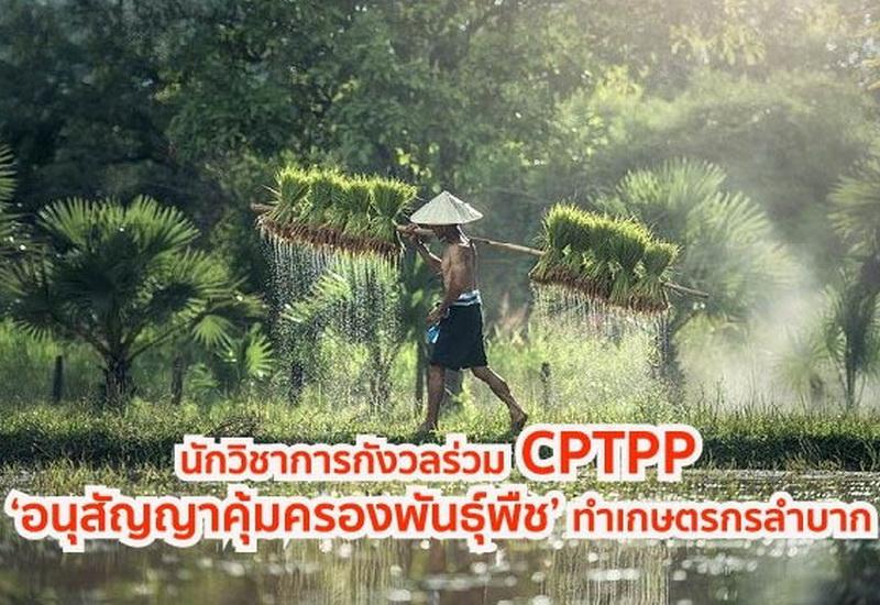 CPTPP 'อนุสัญญาคุ้มครองพันธุ์พืช'